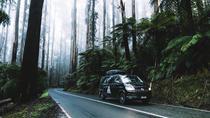 Mornington Peninsula Hiking Tour from Melbourne