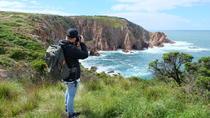 Phillip Island Hike & Wildlife Day Tour from Melbourne, Melbourne, Bus & Minivan Tours