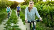 Vienna Water And Wine : A Pleasure Tour by Bike and Foot, Vienna, Bike & Mountain Bike Tours