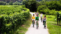 Small Group Wachau Valley Winery Bike Tour, Vienna, Bike & Mountain Bike Tours