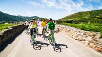 Wine Tasting Bike Tour departing Vienna, Vienna, Dinner Packages