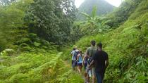 St Lucia Rainforest Hiking Tour, St Lucia, Hiking & Camping