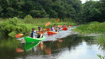 Lake Gatun Boat Tour Including Kayaking and Lunch, Panama City, Day Cruises