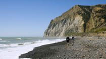 Half-Day Wairau Lagoon Tour from Blenheim, Blenheim, Half-day Tours