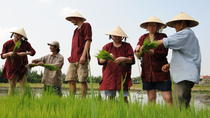 Rice Planting and Fishing Day Trip from Hoi An, Hoi An, Day Trips
