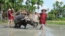 Small-Group Hoi An Country Life Agricultural Experience, Hoi An, Eco Tours