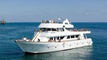 Sea Star Full Day Cruise from Limassol, Limassol, Day Cruises