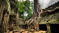 Ta Prohm and Banteay Srei Temples - Private Tour from Siem Reap, Siem Reap, Private Sightseeing ...