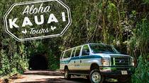 Rainforest 4x4 Van Tour and Hiking Adventure, Kauai, 4WD, ATV & Off-Road Tours