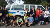 History and Movie Tour of Beaufort by Van, Hilton Head Island, Walking Tours