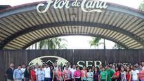 Flor de Caña Rum Factory Tour, Managua, Cultural Tours
