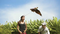 Bali Bird Park Admission Ticket, Bali, Attraction Tickets