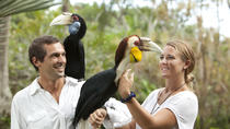 Bali Bird Park Admission Ticket with Lunch, Bali, Day Trips