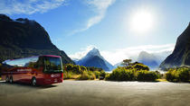 Milford Sound Coach & Nature Cruise with Buffet Lunch from Te Anau, Te Anau, Day Trips