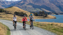 Station 2 Station Cycle Trail, Queenstown, Bike & Mountain Bike Tours