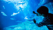 Billet pour l'Aquarium de Paris, Paris, Attraction Tickets