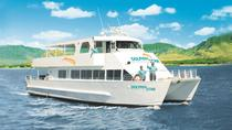 Oahu Dolphin-Watching Cruise with Lunch, Oahu, Dolphin & Whale Watching