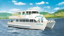 Oahu Wild Dolphin Watching Cruise and Snorkel with Lunch, Oahu, Dolphin & Whale Watching