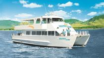 Oahu Wild Dolphin Watching Cruise en snorkel met lunch, Oahu, Dolphin & Whale Watching