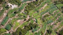 Cinque Terre: Full-Day Private Tour with Wine Tasting, La Spezia, Private Sightseeing Tours