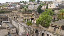 Private Herculaneum Archaeological Site Tour, Campania, Private Sightseeing Tours