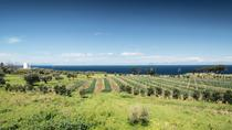 Private Wine Tour and Tasting from Taormina, Taormina, Private Sightseeing Tours