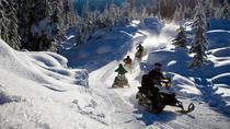 Snowmobile Experience in Tonale, Trento, Ski & Snow