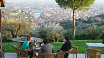 Wine Tasting Session in Verona Hills, Verona, Wine Tasting & Winery Tours