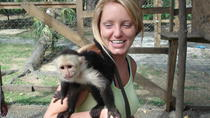 Monkey and Parrot Interaction plus Beach Resort at West Bay Beach, Roatan, Ziplines