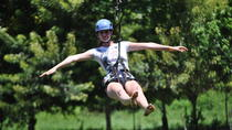 Zipline, Monkey and Parrot Interaction plus Beach Resort Combo Tour in Roatan, Roatan, Ziplines
