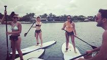 1 Hour Miami Beach Paddle Board Rental, Miami, Stand Up Paddleboarding