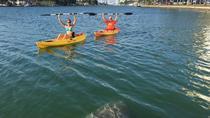1 Hour Miami Beach Single Person Kayak Rental, Miami, Kayaking & Canoeing