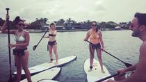 1 Hour Paddle Board Rental in Miami Beach, Miami, Stand Up Paddleboarding