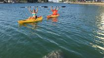 2 Hour Miami Beach Single Kayak Rental, Miami, Kayaking & Canoeing