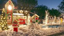 Christmas Lights Tour by Motorbike in Tampa, Tampa, Motorcycle Tours