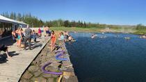 Golden Circle Secret Lagoon Day Trip from Reykjavik, Reykjavik, Dolphin & Whale Watching