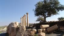 Private Guided Umm Quais and Jerash tour with lunch, Amman, Day Trips