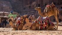 Private Tour from Amman: Petra with Camel Ride, Amman, Nature & Wildlife