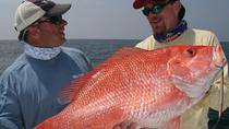 Half-Day Sport Fishing in the Papagayo Gulf, Guanacaste and Northwest, Fishing Charters & Tours
