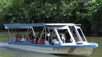 Palo Verde National Park Boat Tour, Liberia, Day Trips