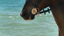 Ocho Rios Shore Excursion: Heritage Beach Horse Ride