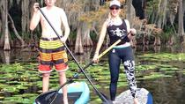 1-Hour Stand Up Paddle Board Rental from Lake Buena Vista Area, Orlando, Stand Up Paddleboarding