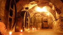 Don Carlos Historical Cellar Admission with Wine Tasting, Castile and León, Private Sightseeing ...