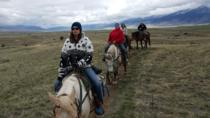 Trail Rides at Erik's Ranch, Bozeman, Nature & Wildlife