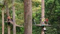 Flying Squirrels Zip line in Chiang Mai (3 Programs), Chiang Mai, Ziplines