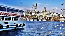 Bosphorus Cruise Asian Side&Dolmabahce palace included lunch, Istanbul, Day Trips