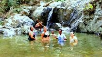 Full-Day Waterfall and Medicinal Trail Tour, Nadi, Full-day Tours