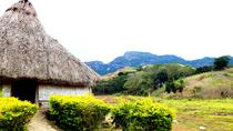 Half-Day Nalesutale Highland Tour, Nadi, Eco Tours