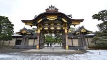 Nijo Castle and Imperial Palace Visit with Private Guide, Kyoto, Day Trips