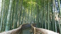 Private Highlights of Kyoto Tour, Kyoto, Bike & Mountain Bike Tours
